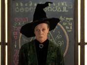 Minerva-McGonagall-Wallpaper-hogwarts-professors-32795911-500-375